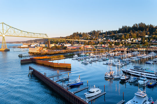 Yachts, ships and fishing boats berthed at West Mooring Basin Marina next to the iconic Astoria Megler Bridge, commercial buildings, and homes on the coast hillside.