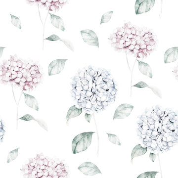 Watercolor seamless pattern with blue hydrangea. Flower print. Hand drawn illustration