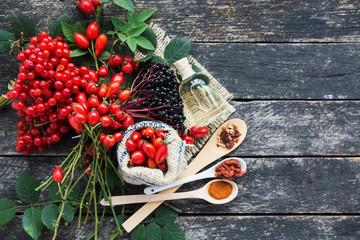 plants herbs composition: Dog rose, bunch branch Rosehips, types Rosa canina hips, essential oil. bunch, dried flowers of linden and chamomile elderberries and goji berries  Fototapete