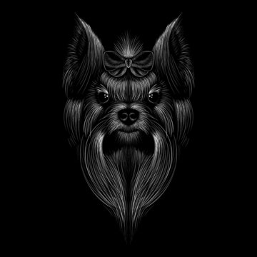 The Vector logo dog  or yorkshire terrier for tattoo or T-shirt design or outwear.  Cute print style dog  or terrier   background.
