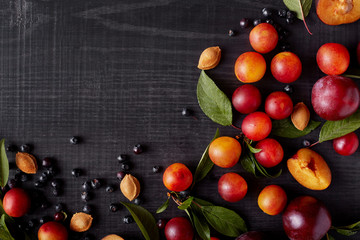 Image with beautiful composition of blueberries, plums, aliches and green leaves on dark concrete surface. Delicious friut on dark background. Top view. Halthy eating concept. Copy space for promotion