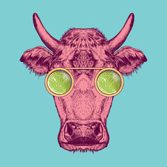 Vector image of a cow with glasses. Cow painted in pink on a turquoise background.