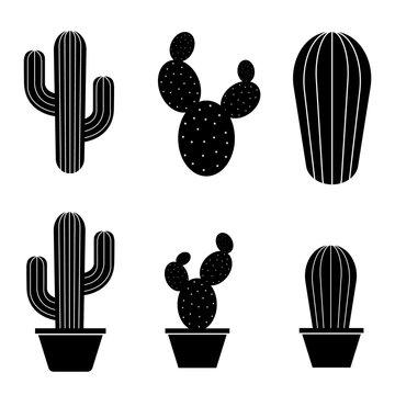 Cactus icon, logo isolated on white background