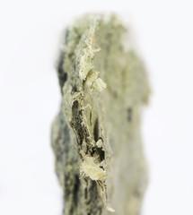 Raw Mineral asbestos shallow focus
