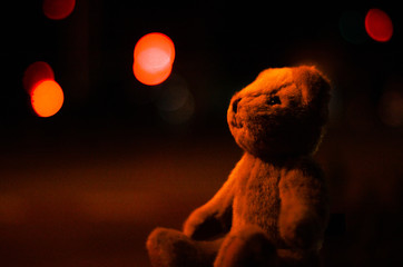 Teddy bear pictures with night lights