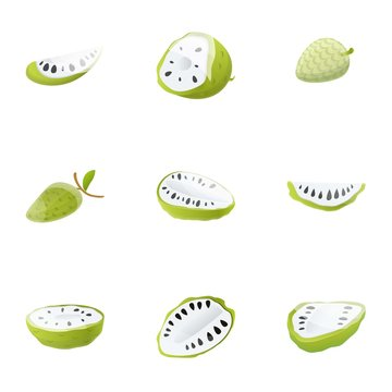 Soursop icon set. Cartoon set of 9 soursop vector icons for web design isolated on white background