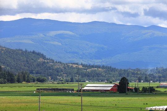 Scenic farm landscape in Skagit valley Washington