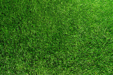 Photo sur Aluminium Herbe directly above shot of fresh green grass or lawn