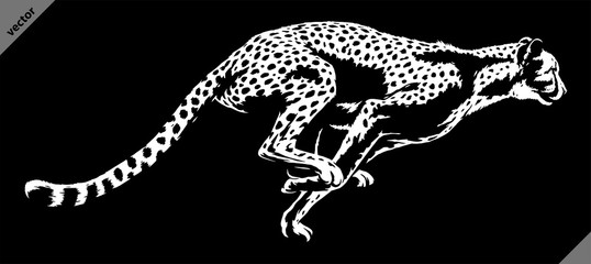 black and white linear paint draw cheetah illustration art
