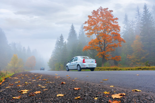 new asphalt road through forest in fog. vehicles driving by in to the distance. mysterious autumn scenery in the morning. tree in orange foliage, some leaves on the ground. gloomy overcast weather.