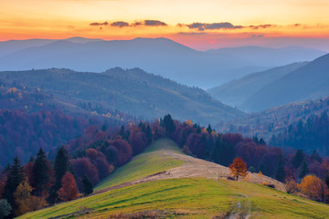 rural area in mountains at dusk. beautiful countryside autumn scenery. path down the hill in to the forest in fall foliage. clouds above the distant ridge an hazy valley.