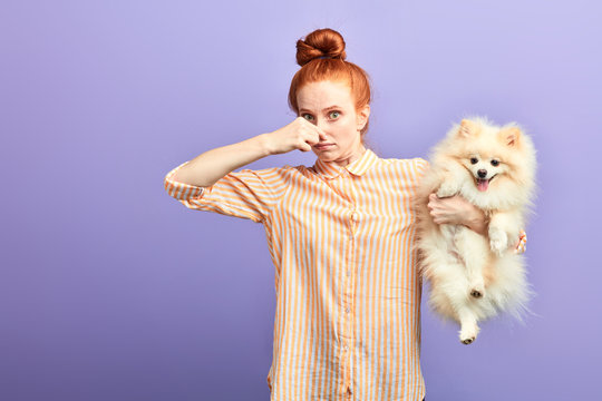 funny girl with stylish striped shirt closing her nose, as the dog is farting. close up portrait. unpredictable situation, isolated blue background, studio shot.