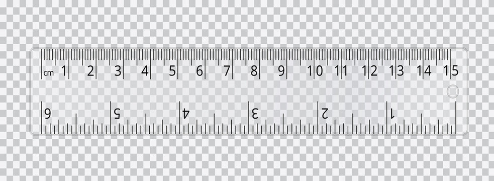 Vector realistic school ruler isolated on transparent background