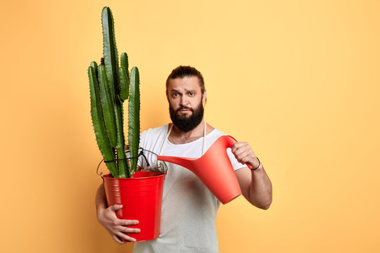 Male handsome bearded florist watering house plant on yellow background. close up photo. daily routine, household chores. lifestyle, free time, spare time. copy space