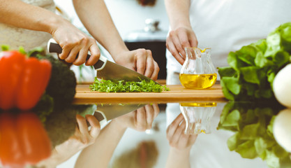 Closeup of human hands cooking in kitchen. Mother and daughter or two female friends cutting vegetables for fresh salad. Friendship, family dinner and lifestyle concepts