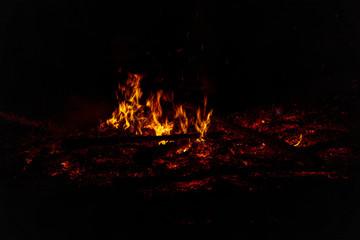 Foto op Aluminium Noorderlicht Camp Fire Christmas in July Tree Burning