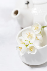 white pialat, tea and jasmine. japanese tea party, vertical