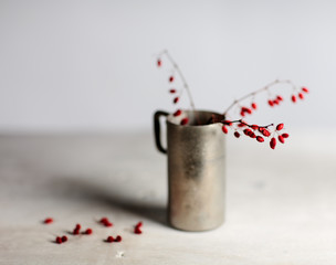 Still Life with Red Berries