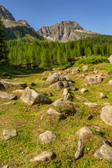 Fototapete - Wooden bench, table and rocky landscape with mountain