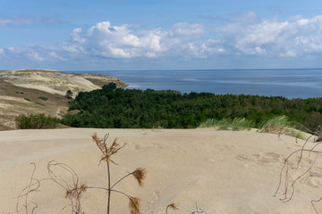 Sands dune. Lithuania.  Isthmus of Courland.