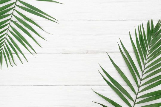 A green palm leaf on the white wooden background.