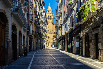 Pedestrian street in Pamplona old town with the Cathedral in the background, Navarre, Spain