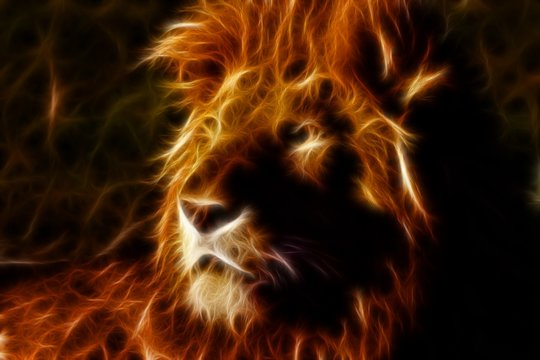 Lion in inferno