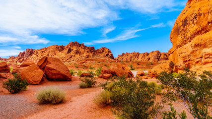 The bright red Aztec sandstone rock formations in the Valley of Fire State Park in Nevada, USA
