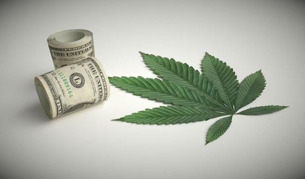 The cannabis business generates large revenues.