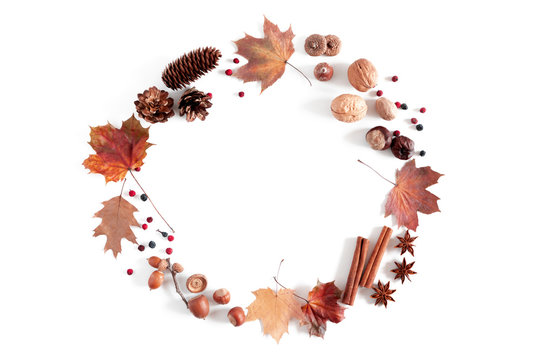 Autumn creative composition. Pattern made of dried autumn leaves, berries, flowers on white background. Fall, thanksgiving day concept. Flat lay, top view, copy space