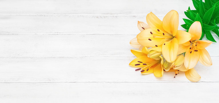 Yellow lilies on a white wooden background. Beautiful flowers. Romance. White horizontal boards. Natural background. Blooming lily bells.