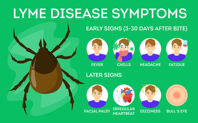 Lyme disease symptoms. Danger for health from tick