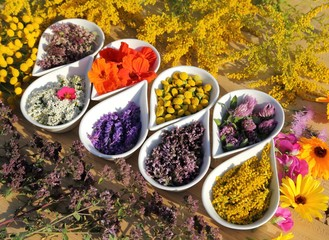 Herbs and flowers.