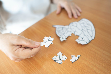 Wall Mural - Elderly woman hands holding missing white jigsaw puzzle piece down into the place as a human brain shape. Creative idea for memory loss, dementia, Alzheimer's disease and mental health concept.