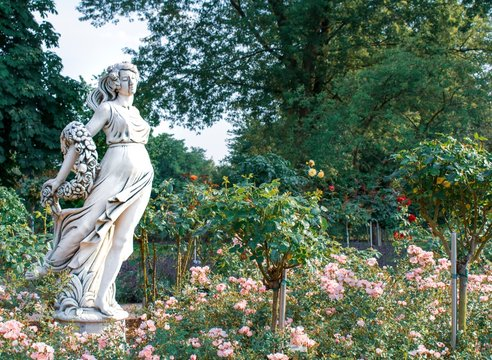 statue in beautiful rose garden