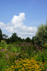 Vertical image of a late-summer perennial garden with colorful flowers, shrubs, and trees against a blue sky with white clouds, with room for copy