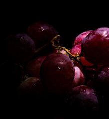 Red grapes sprinkled with waterdrops in dark setting