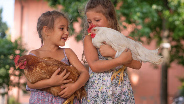 Authentic moment of two happy little smiling girls sisters are holding their hens outside the countryside house in a sunny summer day.