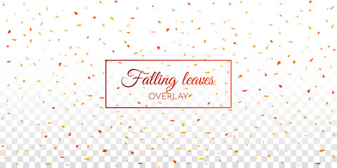 Falling leaves overlay effect. A4 format Mockup. Autumn concept. Vector illustration.