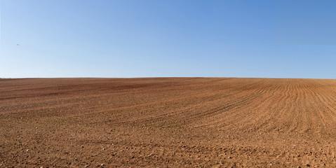 Vista panorámica de loma de  terreno agricola  arado recientemente y preparados para el cultivo y cielo azul Fotoväggar