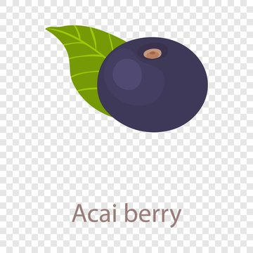 Acai berry icon. Isometric illustration of acai berry vector icon for web