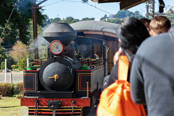 Tourists waiting for an old steam locomotive to take a ride.
