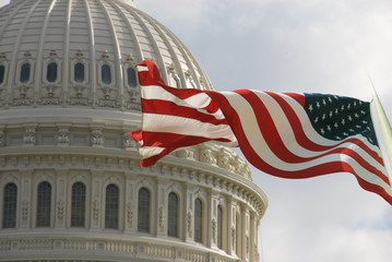 Beautiful flag of the United States of America waving with the strong wind and behind it the dome of the Capitol. Fotomurales