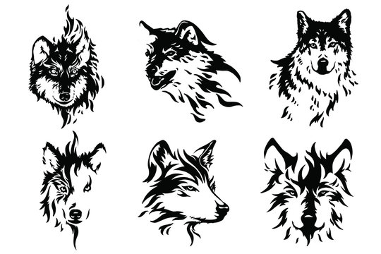 Heads of a wolf set. Styling the head for your design. Vector illustration, isolated objects.