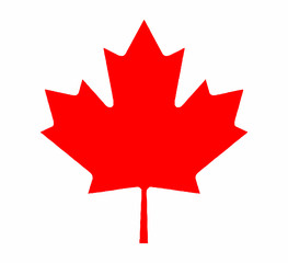 Canadian Maple Leaf From Flag