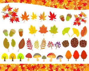 Obraz 秋の植物 イラストセット - fototapety do salonu