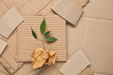 Green plant and crumpled paper on carton, top view with space for text Wall mural