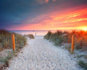 Wall Mural - der Weg zum Meer - romantischer Sonnenaufgang