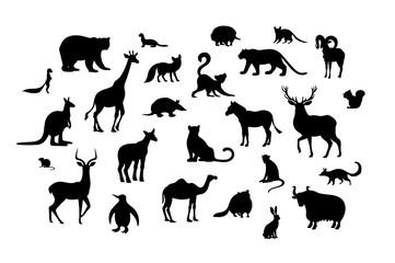 Set of animal silhouettes. Armadillo camel deer echidna impala numbat okapi quoll raccoon urial vole weasel xerus lemur
