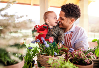 Father and small toddler son indoors at home, watering flowers.